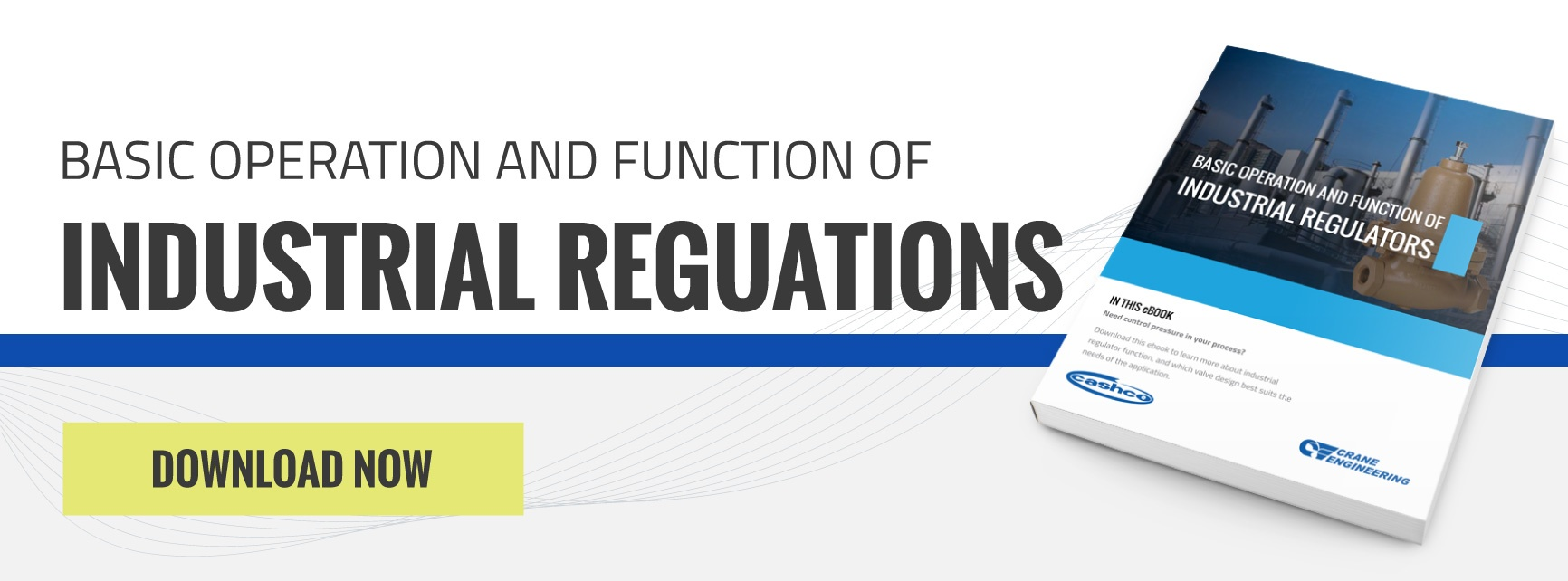 Download Basic Operation and Function of Industrial Regulators