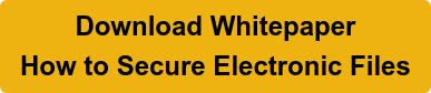 Download Whitepaper How to Secure Electronic Files