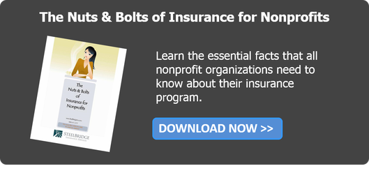 Insurance for Nonprofits Nuts and Bold Guide