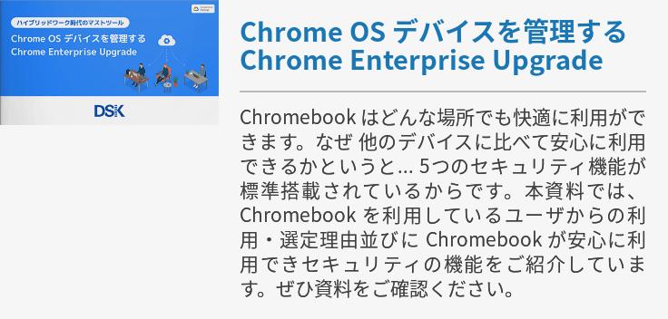 Google Chrome Enterprise