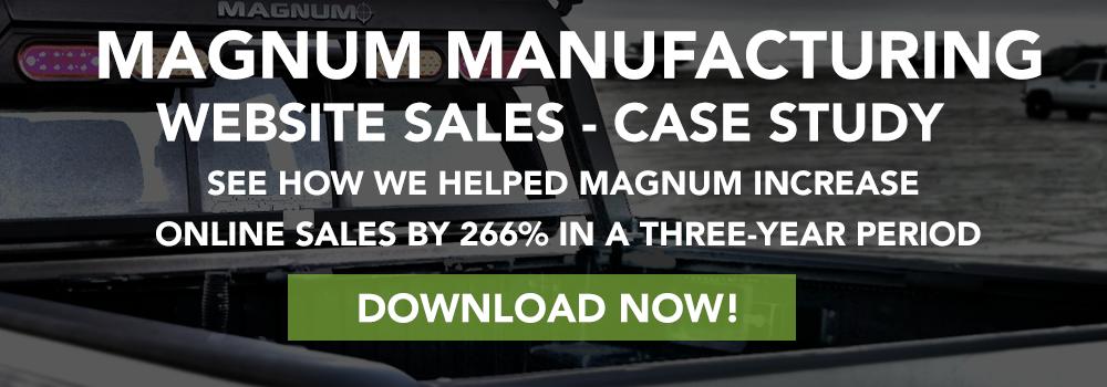 Magnum Webs Sales Case Study CTA