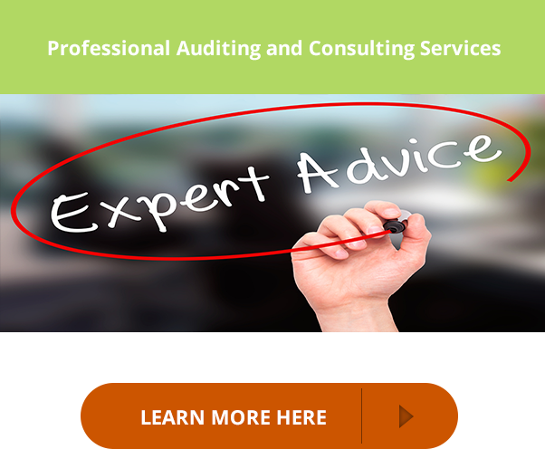 Professional auditing and consulting services  learn more here