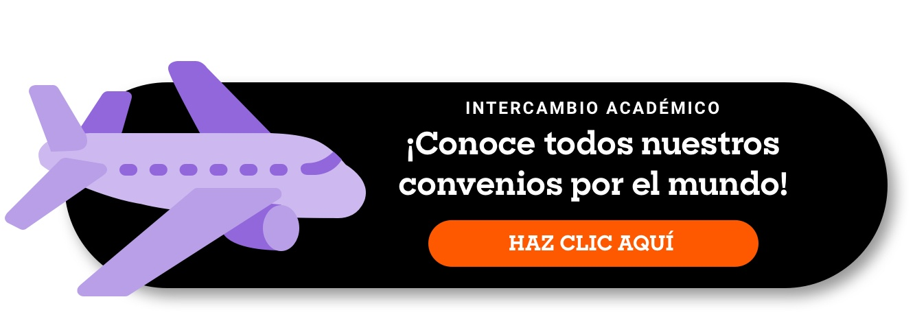 Intercambio académico