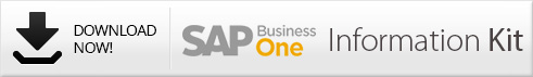 Access the SAP Business One Intelligence Kit