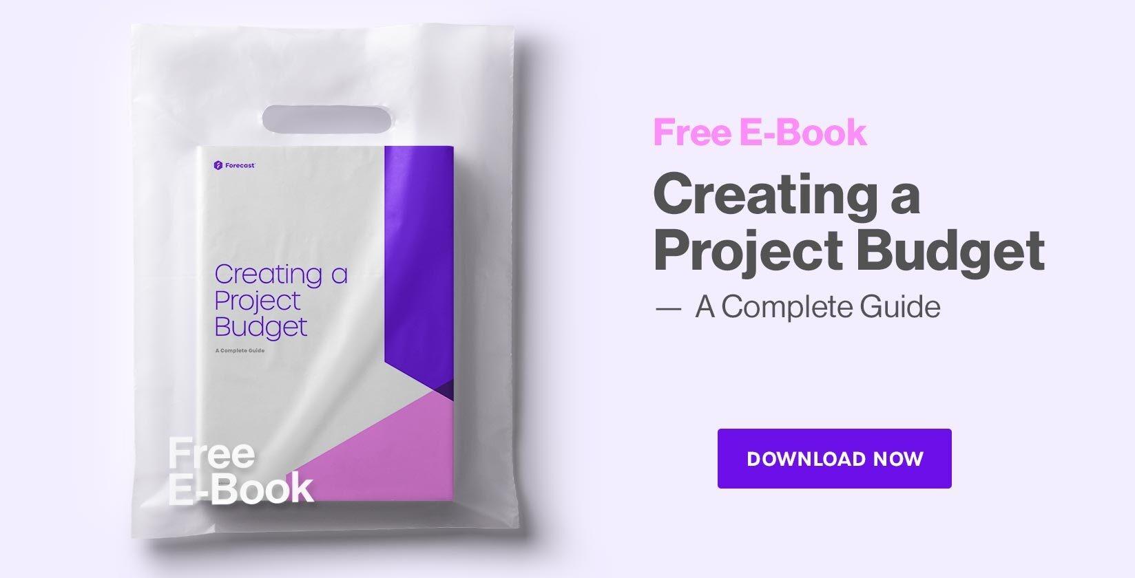 project budget pdf