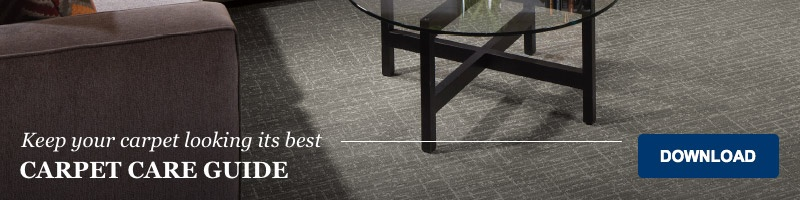 download our carpet care guide