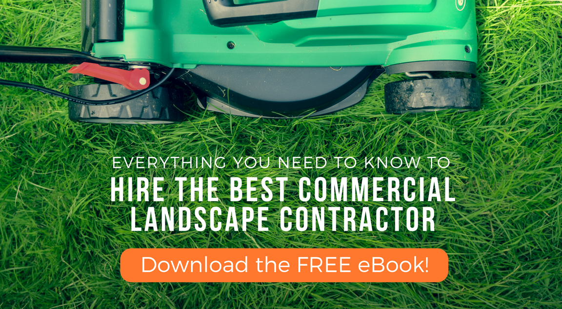 Read our FREE landscape hiring guide whitepaper
