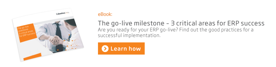 ERP at go-live ebook CTA