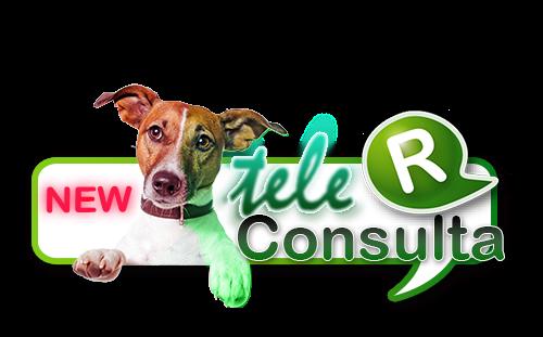 telemedicina en mascotas