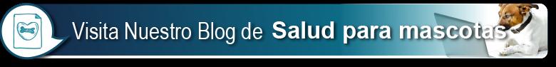 Blog Salud Mascotas
