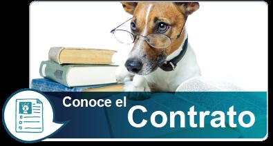 Conoce el contrato Pet Plan