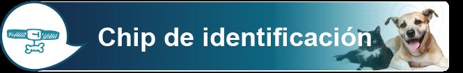 Chip de identificación