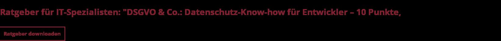 """Ratgeber für IT-Spezialisten: """"DSGVO & Co.: Datenschutz-Know-how für Entwickler  – 10 Punkte, die Sie kennen sollten"""" Ratgeber downloaden"""
