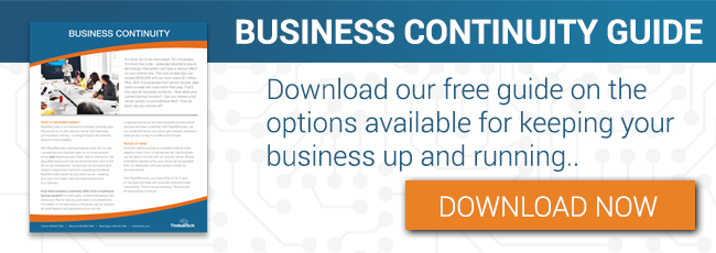 Business Continuity Guide Download