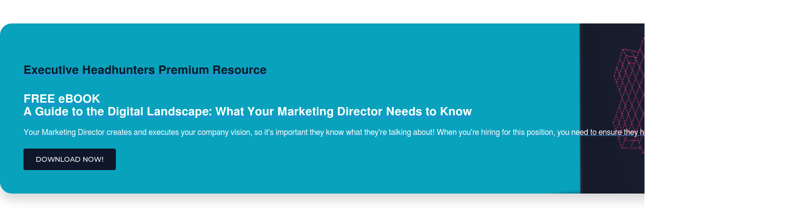 Executive Headhunters Premium Resource  FREE eBOOK A Guide to the Digital Landscape: What Your Marketing Director Needs to Know  Your Marketing Director creates and executes your company vision, so it's  important they know what they're talking about! When you're hiring for this  position, you need to ensure they have the digital skills needed to succeed. DOWNLOAD NOW!