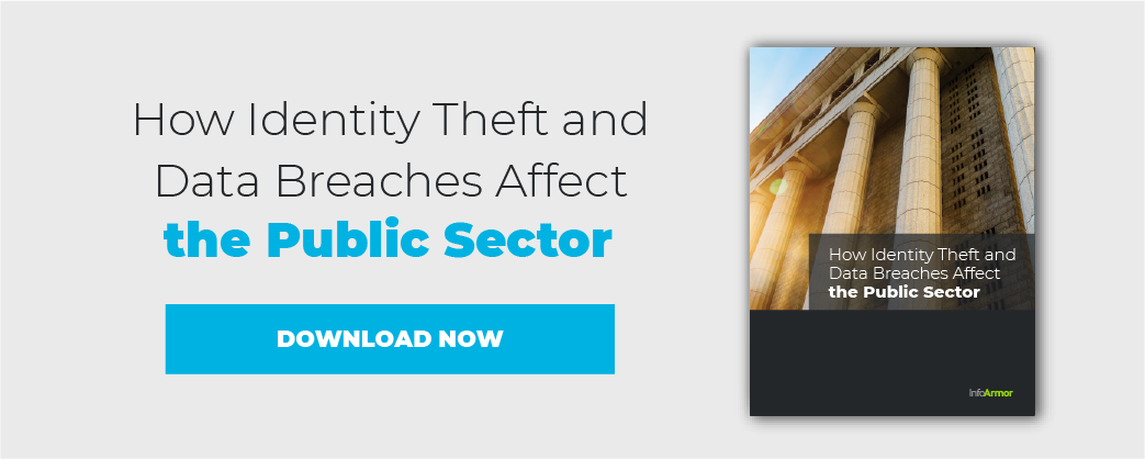 Public Sector Affected by Identity Theft and Data Breaches
