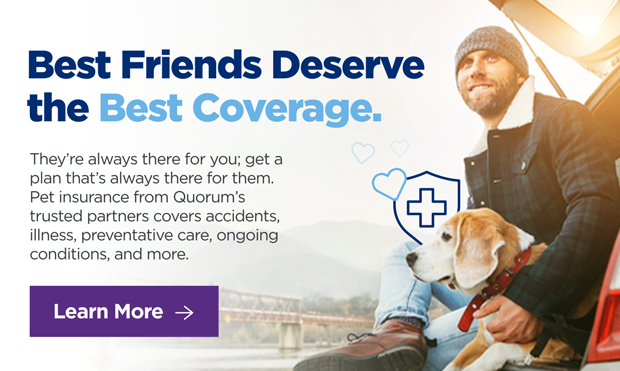 Best Friends Deserve the Best Coverage. They're always there for you; get a plan that's always there for them. Pet insurance from Quorum's trusted partners covers accidents, Illness, preventative care, ongoing conditions, and more. Click here to learn more.