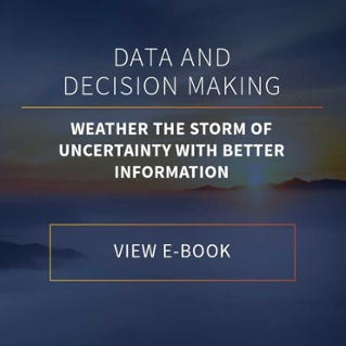 View Data & Decision Making E-book