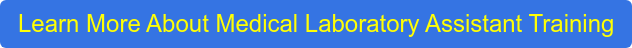 Learn More About Medical Laboratory Assistant Training