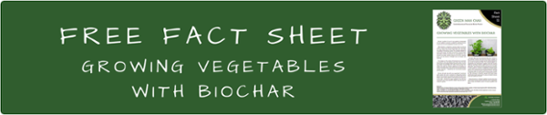 Growing Vegetables with Biochar