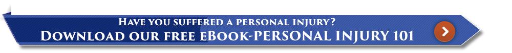 Personal Injury 101 ebook