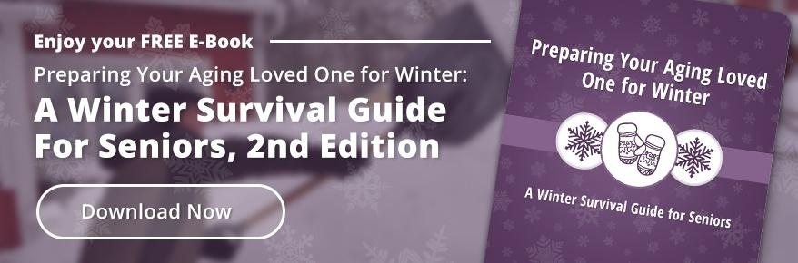 Winter Survival Guide for Seniors