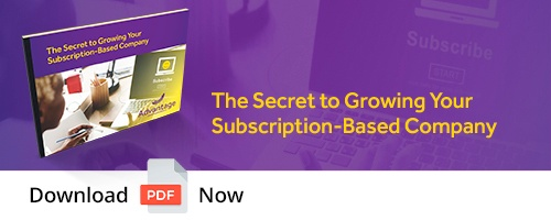 Download Subscription-Based Company eBook