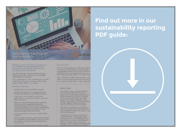 guide button for sustainability reporting