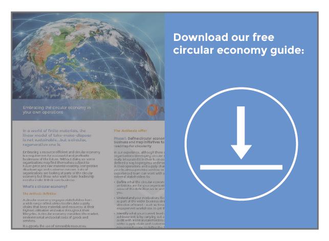 circular economy download guide button