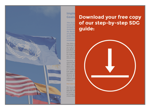 SDG guide download image