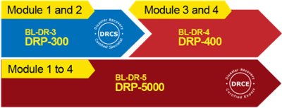 Phases Learning Roadmap IT DRP-200-300-400-5000