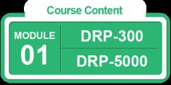 [BL-DR-3] [M1] Module 1 of DRP-5000 IT DR Expert Implementer [BL-DR-5]