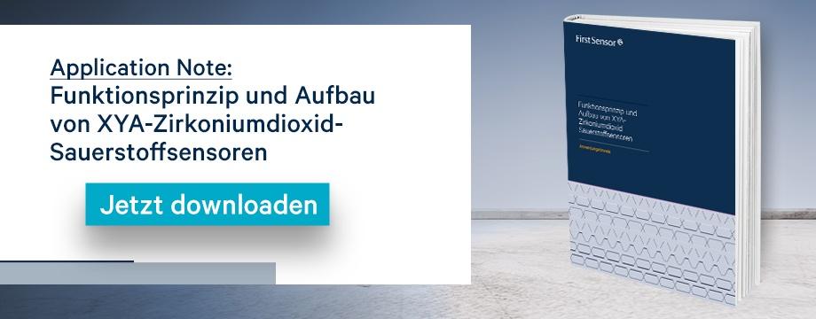 Application Note: Funktionsprinzip und Aufbau Zirkoniumdioxid-Sauerstoffsensoren