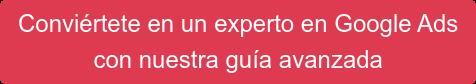 Descarga la guía profesional de Google Ads