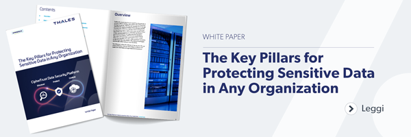 White Paper: The Key Pillars for Protecting Sensitive Data in Any Organization