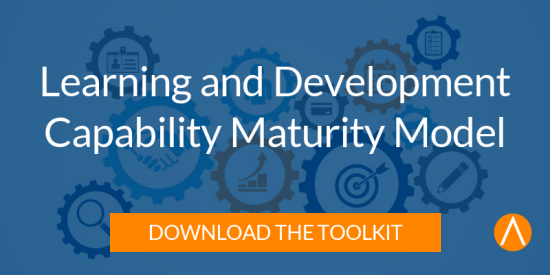 Download the Learning and Development Capability Maturity Model Toolkit