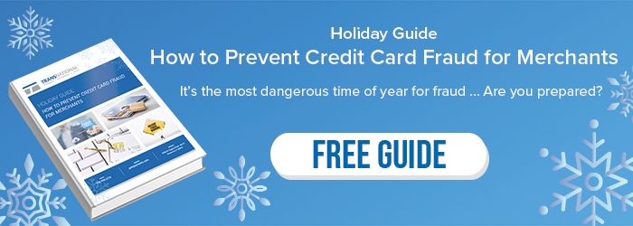 Free holiday guide to preventing credit card fraud for merchants