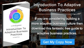 Adaptive Business Practices Guide - Small