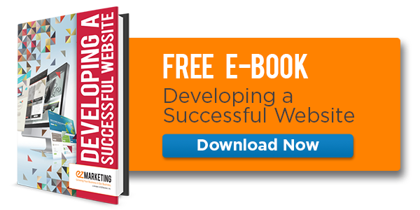 Free eBook: Developing a Successful Website