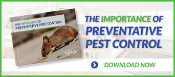 The Importance of Preventative Pest Control Ebook >> Download Now!