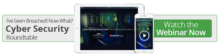 Watch the On-Demand Cyber Security Roundtable Webinar Now!
