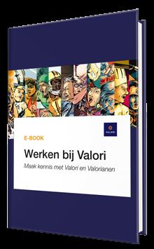 E-book Werken bij Valori