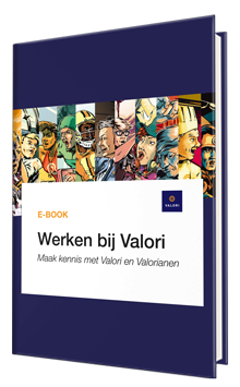 e-book Werken bij Valori cover