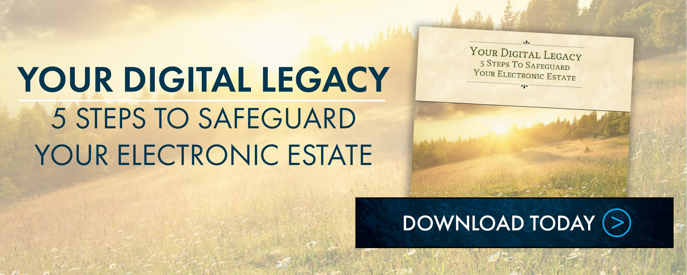 Your Digital Legacy: 5 Steps to Safeguard Your Electronic Estate
