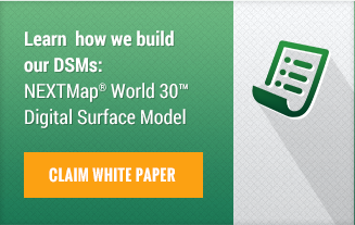 World 30(TM) DSM White Paper - Download now