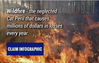 Wildfire Infographic