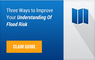 InsitePro Risk Management Guide