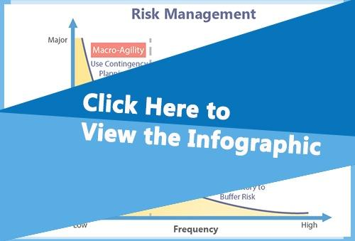 Risk Management Infographic