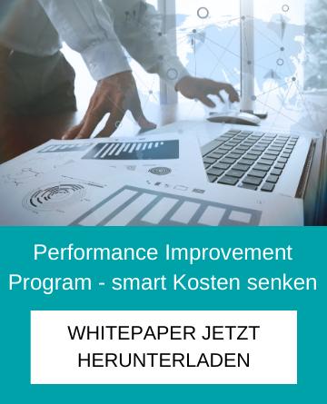 Performance Improvement Program - smart Kosten senken