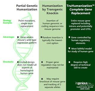 Humanization Compare Chart